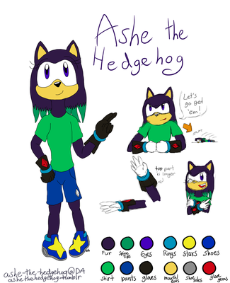 Ashe the Hedgehog 2.0 by ashe-the-hedgehog