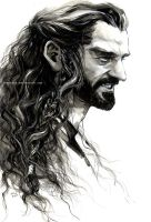 Angry Thorin by evankart