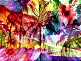 colours.come.and.go by Kerbi