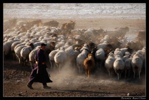 Nomad Mongol by westindies972