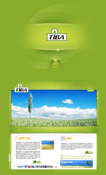 Tiba website by ahmedzahran
