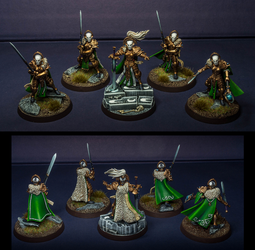 The sisters of the sword by McGoe