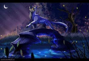 in the night,in the light :.commission.: by Silverbloodwolf98