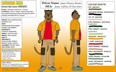 Driver Profile - James Abrams (Reference sheet) by cabcat