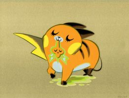 Raichu and Rotom
