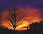 Sunset Tree in Autumn by vanndra