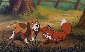 The Fox and The Hound by Nollaig