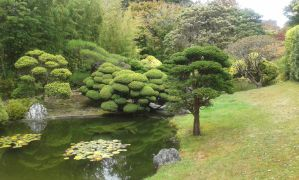 Japanese Tea Garden Photo #10 by Cuteagle