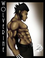 wolverine1 by salo-art