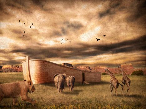 ark of Noah by robsonbatista