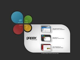 Gopax Webdesign by grueter89