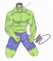 Hulk by SJWebster