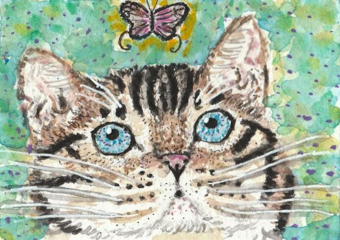 Bengal cat The Pink Butterfly  watercolor aceo by tulipteardrops