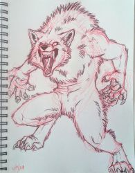 Snarly Werewolf Doodle by Stray-Sketches