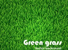 Green grass vector background by vectorbackgrounds