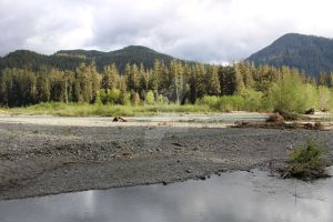 Hoh river 3 by seancfinnigan