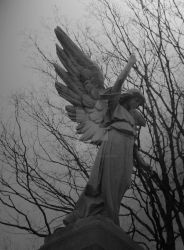Winged Angel by The-West-Gate