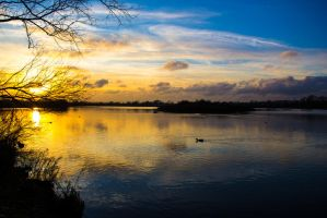 Fairlop Waters - 12. by LouHartphotography