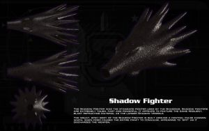 Shadow Fighter ortho by unusualsuspex