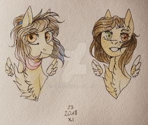 Old and new look of my ponysona by voxeu