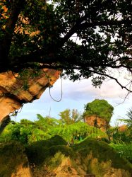 Face overlooking Pandora by ashbrigham