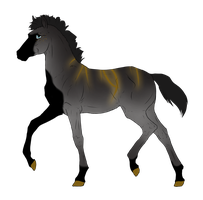 N3405 Padro Foal Design for amalthea2010 by casinuba