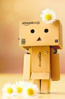 Danbo and Daisys by KikisDesigns