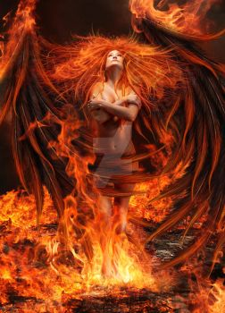 Phoenix - What is Risen by Thy-Darkest-Hour