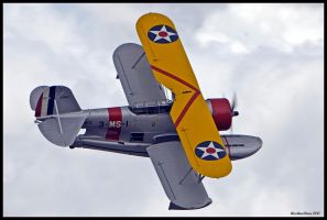 Planes of Fame 38 by AirshowDave
