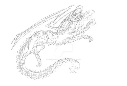 Dragon Sketch by Digital-Claws