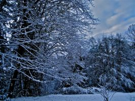 snowy day by pagan-poetess