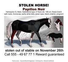 Wanted: Papillon Noir by life-d-sign