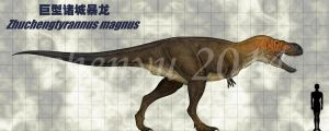 Zhuchengtyrannus magnus by sinammonite