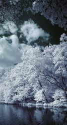 False color Maksimir 1 by TheSecondMaker