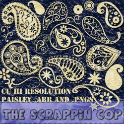 Funky Paisley Brushes by debh945