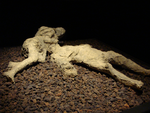 Pompeii death cast - man and wife? 2 by Ghostexorcist