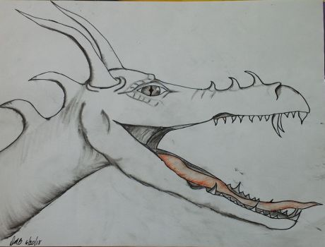 dragon head charcoal and pen by lostdmw