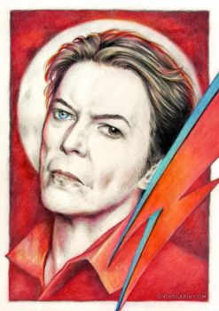 David Bowie tribute by vinegar