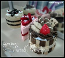 Sweet Boxes by SongAhIn