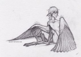 Oliver as a harpy by Mayka94