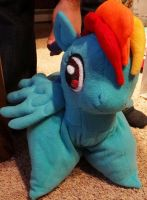 Rainbow Dash pillow pet by someofmywork