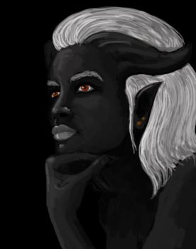 Adaar by Lagarde