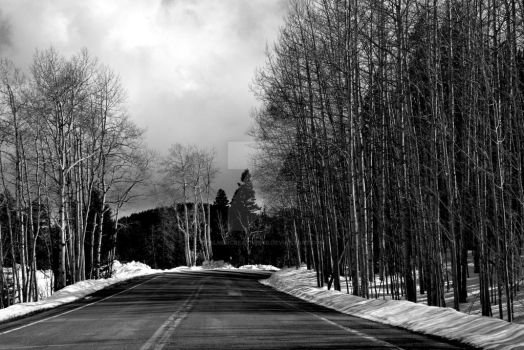 The Road by palmercreativeind