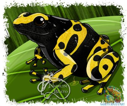 Yellow Banded Dart Frog by NadilynBeato