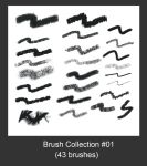 My Brush Collection by slyvanie