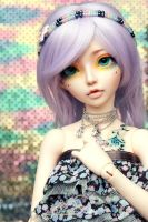 Pommie Sparkles by tinaheart