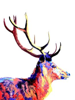 Stag by GSMESS