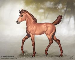 Warmblood Foal for Morning Dust Ranch by AonikaArt