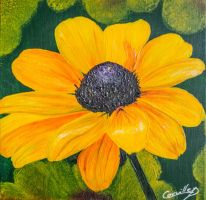 Acrylique 51 by dc58