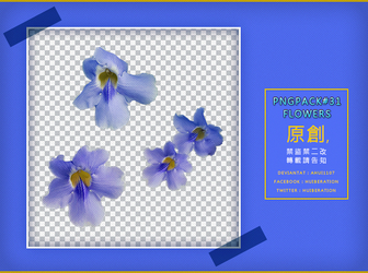 PngPack #31 flowers by ahui1107 by ahui1107